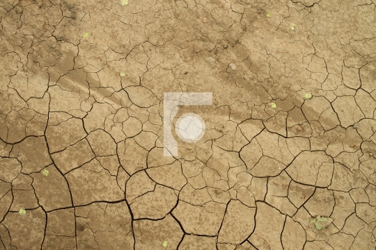 Dried Summer Sand Mud Texture - Drought Concept Free Image