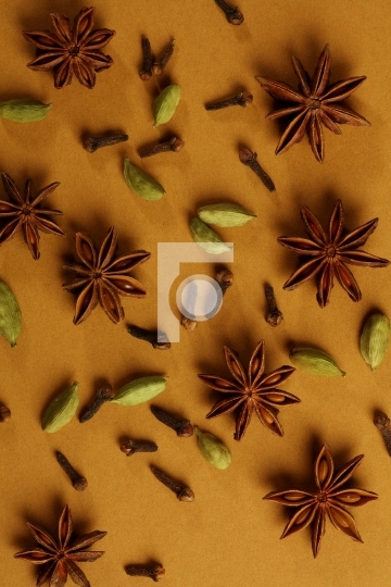 indian spices - cardamom, star, clove