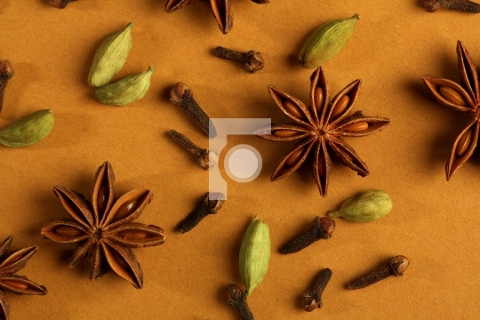 indian spices - cinnamon, cloves, star