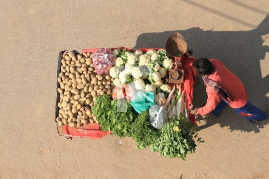 Indian Vegetable Seller with a cart- Top View
