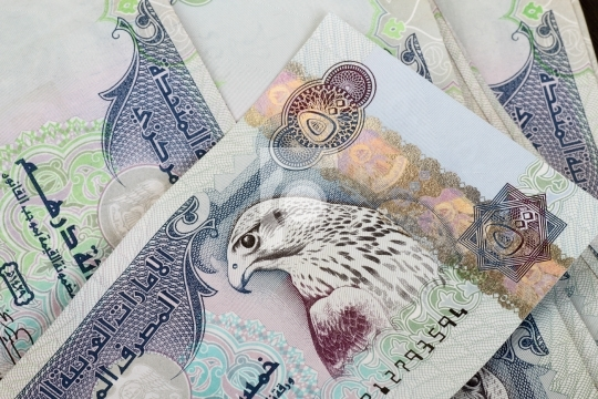UAE Currency Dirhams - 500 AED Bank Notes