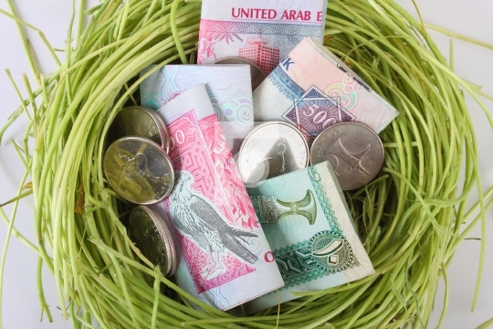 UAE money dirhams in a nest
