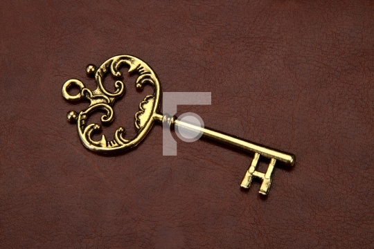 Vintage / Retro Golden Key on brown leather background