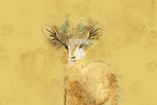 Wildlife Deer Digital Painting Free Stock Photo