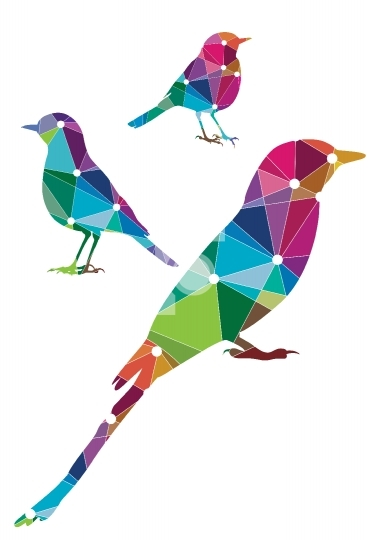Abstract Colorful Bird Illustrations Vector Format