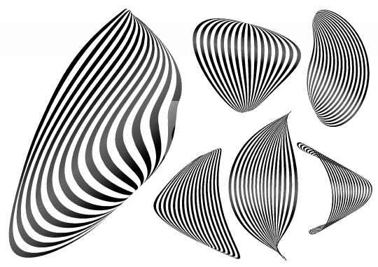 Black & White Abstract Zebra Lines Background Vector