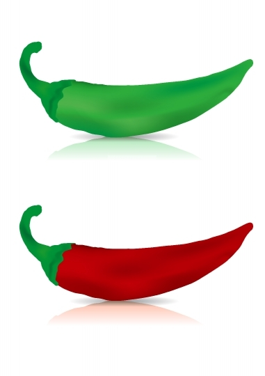 Fresh Red & Green chilly vector illustration