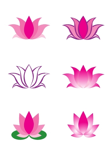 illustration of lotus flower